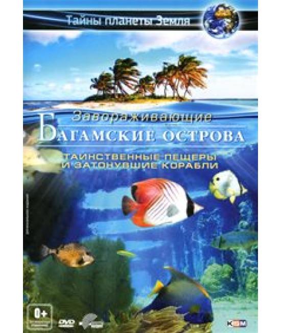 Приключения на Багамских островах: Таинственные пещеры и затонувшие корабли [DVD]