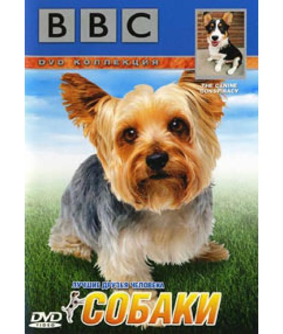 BBC: Живая природа. Собаки [DVD]