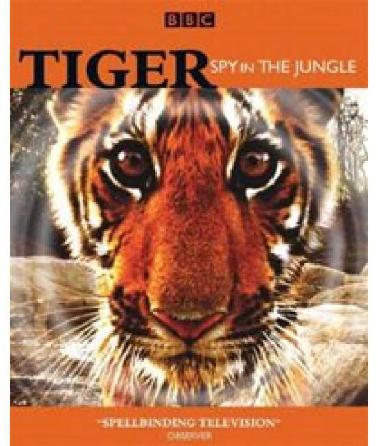 Тигр: Шпион джунглей [DVD]