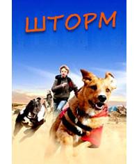 Шторм [DVD]