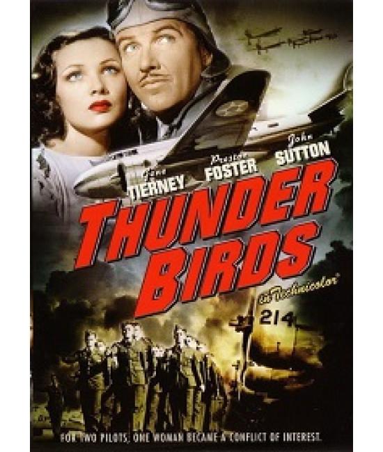 Гром птиц: Солдаты воздуха [DVD]