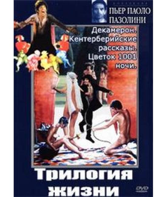 Трилогия жизни [3 DVD]