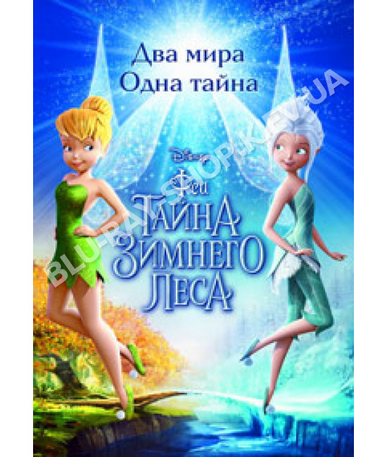 Феи: Тайна зимнего леса [DVD]